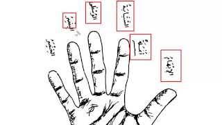 Мединский курс. Том 3. Урок 4.Причастия или имена действователя,поддейственного [baytalhikma.ru]