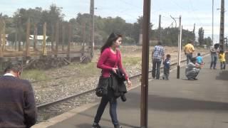 La Negra en Victoria en el último viaje del Tren de la Araucanía del verano 2012 - 26/02/2012