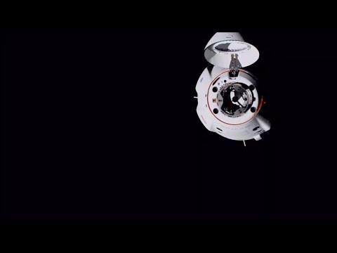 Crew-1 Mission | Docking