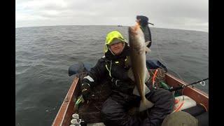 Морская рыбалка в мае 2019 г на Баренцевом море вытащили треску на 6 кг Ryobi Ceratec AD 80