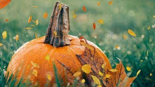 "Peaceful music, Relaxing music, Instrumental music, Autumn Nature ""Harvest Moon"" Tim Janis"