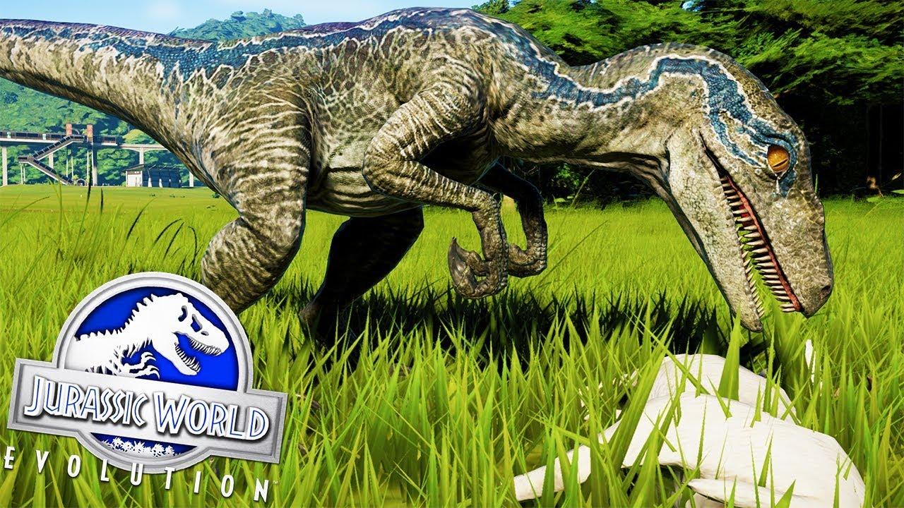La Raptor Squad Esta Aqui Blue Y Los Velociraptores Mas Famosos Jurassic World Evolution Youtube El velociraptor fue un dinosaurio bípedo de movimiento rápido, con poderosas piernas y cuerpos ligeros. la raptor squad esta aqui blue y los velociraptores mas famosos jurassic world evolution