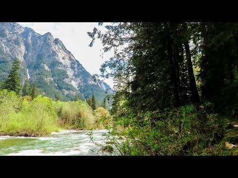 2017-05-08 Middle Fork Snoqualmie River Trail Near North Bend