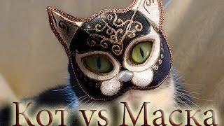Кот против маски
