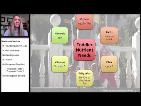 14.1 Nutrition in Childhood and the Older Years: Toddler Nutrient Needs