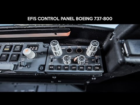 Electronic Flight Instrument System EFIS Boeing 737-800