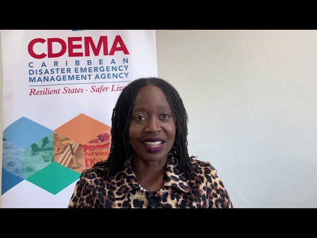 Message from Executive Director CDEMA - Caricom Energy Month 2020