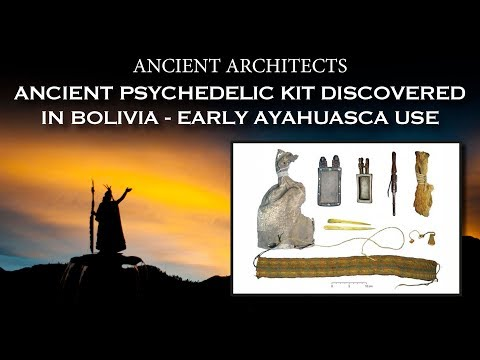 Dana McKenzie - Traces of five drugs found on 1000-year-old South American ritual kit
