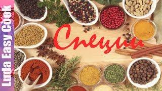 видео Как правильно сочетать разные виды зелени в салате. Обсуждение на LiveInternet