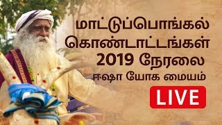 Maatu Pongal Celebrations 2019 at Isha Yoga Center | Sadhguru Tamil