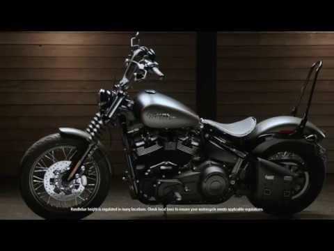 One-Piece Tall Rigid Mount Sissy  Bar | Harley-Davidson Bobber Accessories