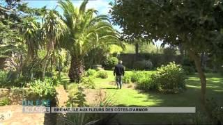 SUIVEZ LE GUIDE : Bréhat, île aux fleurs des Côtes d'Armor