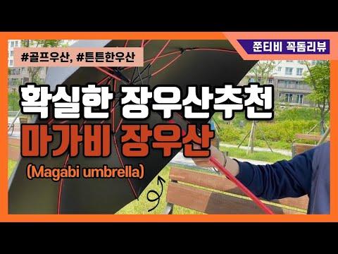 [쭌티비 꼭 도움되는 꼭돔리뷰] 튼튼하고 확실한 장우산, 골프우산 마가비 장우산 리뷰