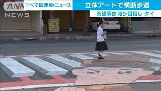 ユニーク横断歩道「すごく目立つ」 交通事故削減へ(19/11/29)
