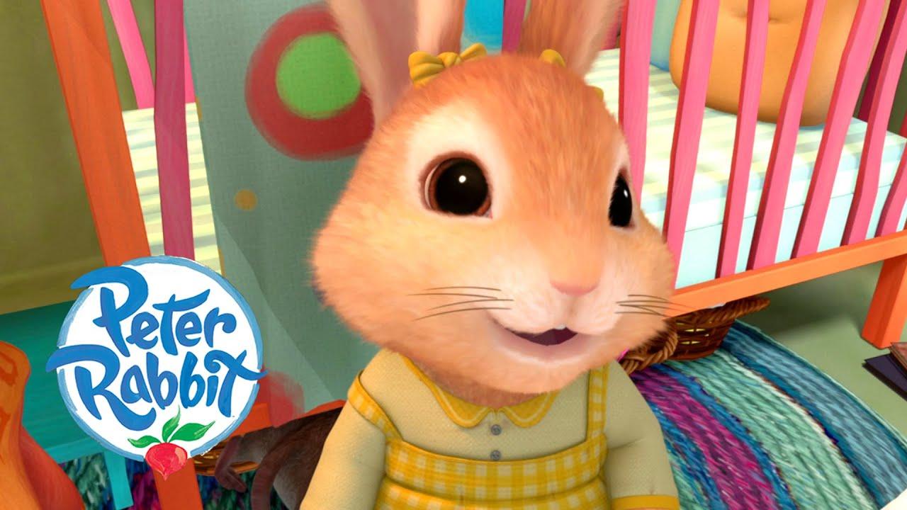 #Summer ☀️ Peter Rabbit - Summer Hide & Seek | Cartoons for Kids