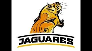 Imagen institucional de JAGUARES (Súper Rugby 2016)