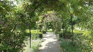 Arboretum Munnikepark, Zwijndrecht, the Netherlands