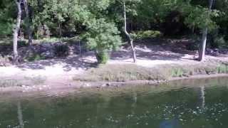 Camping Le Mas de la Source en sud Ardèche