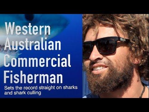 Western Australian Fisherman Sets The Record Straight On Shark Culling