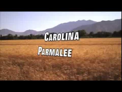 Carolina - Parmalee(Lyrics)