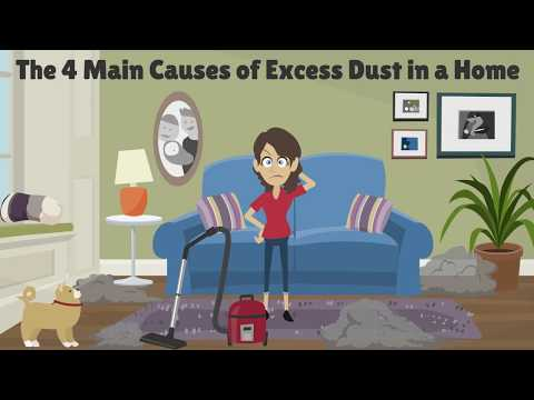 Are You Aware What's Residing in All Your Family Members Dust
