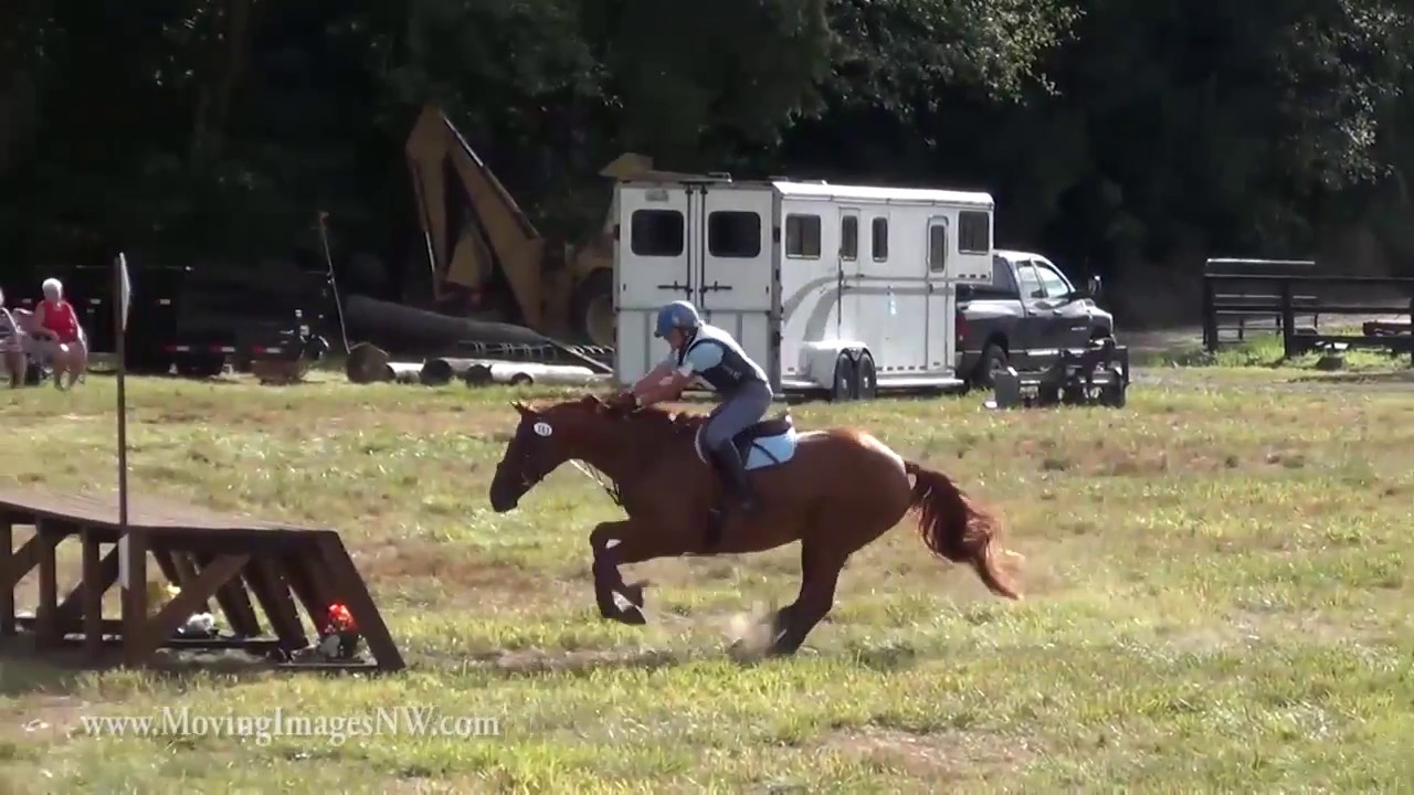 Try Everything - Horse Bloopers 2016