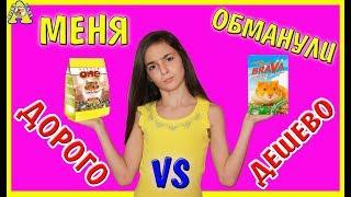 ДОРОГО VS ДЕШЕВО / Little One VS Brava / Литл Ван против Брава / Хомки выбирают корм / Алиса Изи