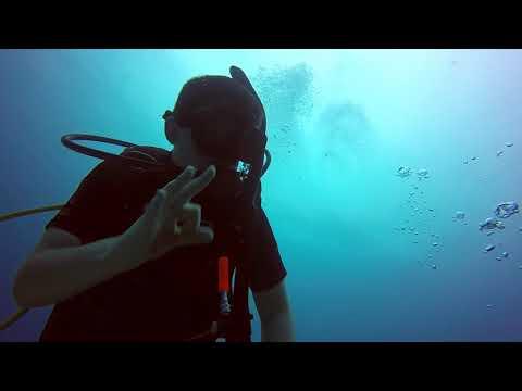Scuba Diving - Belize Dive #1 - Dec 26, 2017