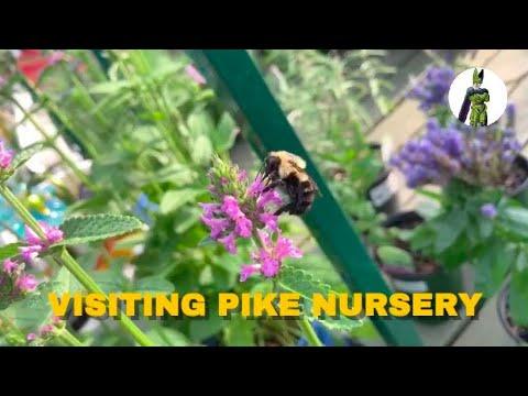 Pike Nursery Tour In Atlanta, Georgia
