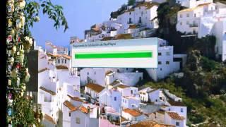 RealPlayer Video to MP3 Converter