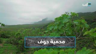 حوف.. أجمل المحميات البرية في اليمن