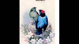 HAPPY BIRTHDAY ELTON!!!! Cage the Songbird Cover by Claude Bernardin