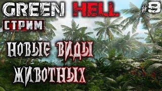 Green Hell #9 СТРИМ 🐊 - Новые Виды Животных - Выживание, Реализм, Хардкор