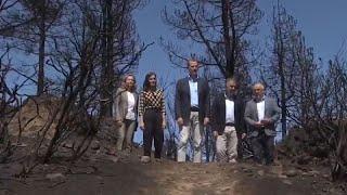 Los Reyes sobrevuelan Gran Canaria para ver los daños del incendio