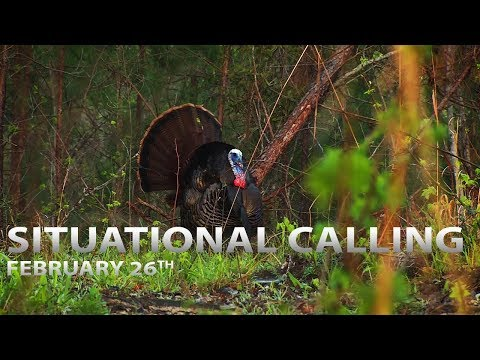 Situational Calling Tactics | Spring Thunder