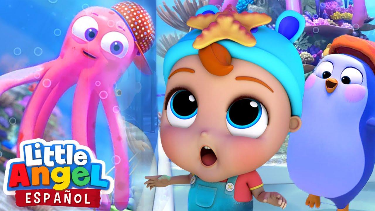 Diversión y Alegría en el Acuario 🐠🐬🦀 | Canciones Infantiles de Bebé Juan | Little Angel Español