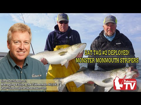 June 4, 2020 New Jersey/Delaware Bay Fishing Report With Jim Hutchinson, Jr.