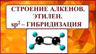 СТРОЕНИЕ МОЛЕКУЛ АЛКЕНОВ.  ЭТИЛЕН. SP2- ГИБРИДИЗАЦИЯ.