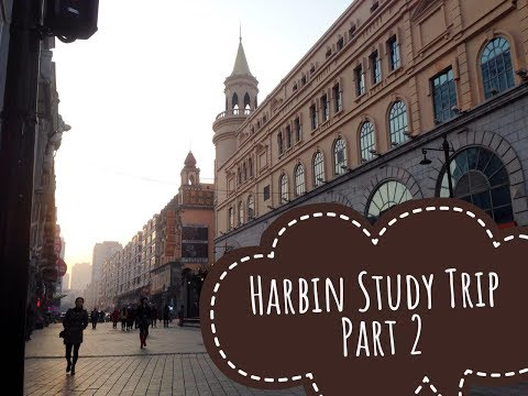 Harbin Study Trip - Part II | Vlog 21 |