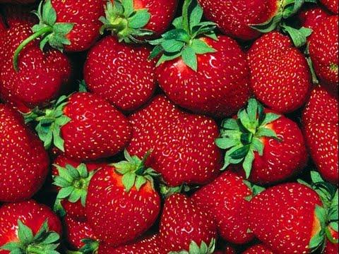 5 вредных продуктов от которых нужно отказаться