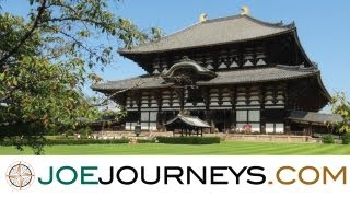 Nara - Japan  | Joe Journeys