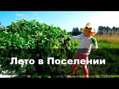 """Летние забавы в Поселение Родовых поместий """"Стрелёнки"""""""