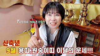 신축년 9월 용띠,원숭이띠 이달의 운세!!!