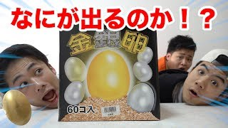 金の卵は大当たり!なにが入ってるかわからないお楽しみ箱が面白い!!