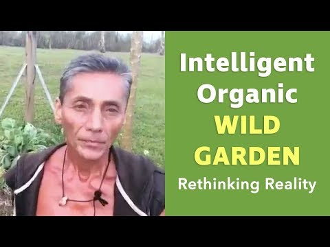 Rethinking Reality: Intelligent Organic Wild Garden | Dr. Robert Cassar