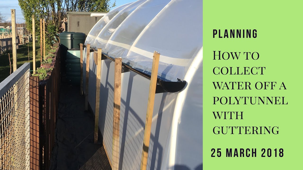 How to collect water off a polytunnel with a gutter