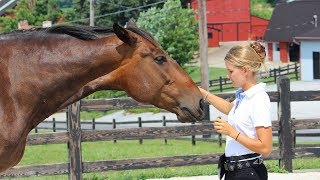 One Simple Warm Up Exercise to Improve Quality Time with Your Horse