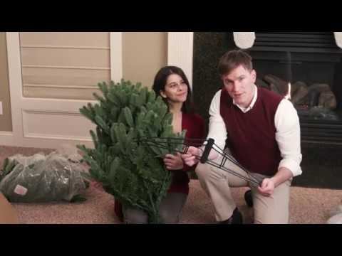 How To Set Up Your Tree
