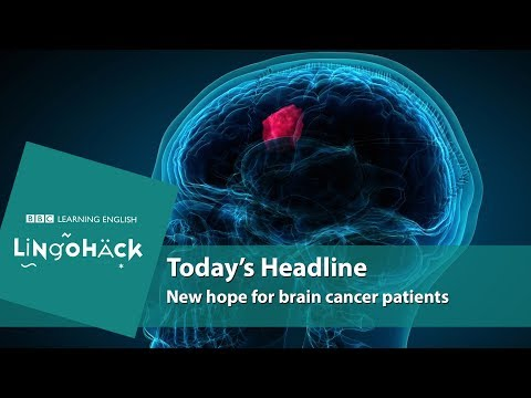 New hope for brain cancer patients: Lingohack