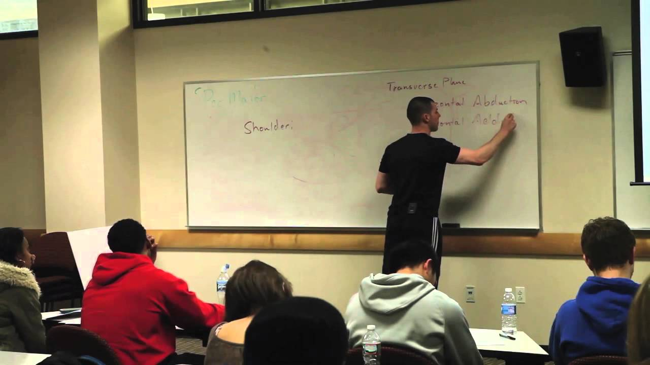 Basics Of The Human Movement System Video 6 Of Functional Anatomy